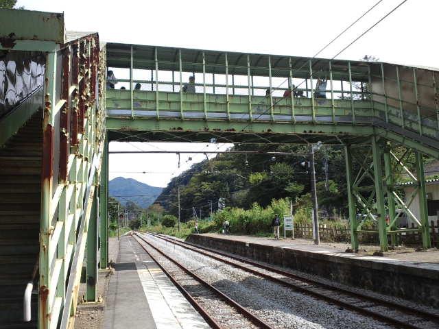 CA3J0181.jpg