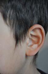 taiki耳