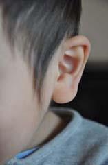 hikaru耳