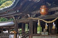 茨城県 筑波山神社②2011_0621