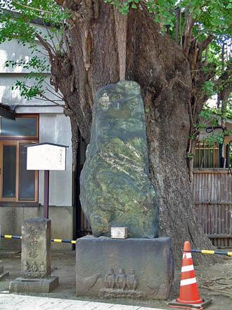 東京都品川区 品川寺のイチョウ④2012_0804