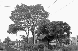 2012_0904_椎の木稲荷-DSC03520