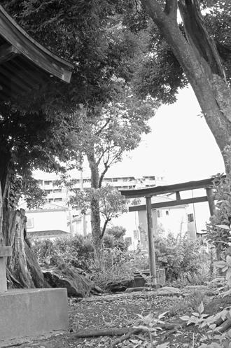 2012_0904_椎の木稲荷-DSC03473