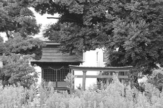 2012_0904_椎の木稲荷-DSC03468