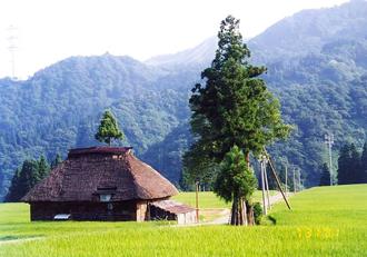 2004_0507_113944-民家のある風景