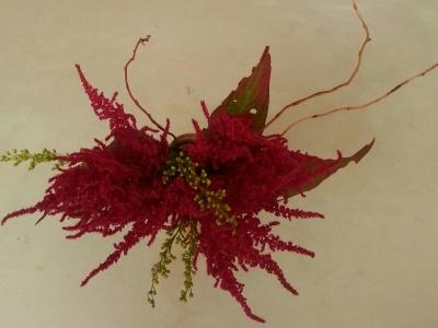 十一月の花⑤