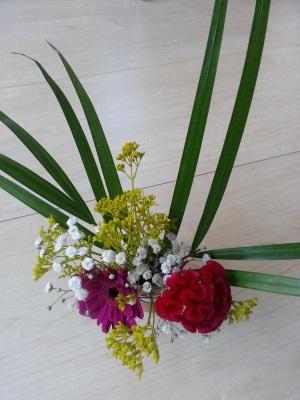 今月の花①