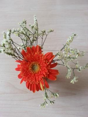 今月の花②
