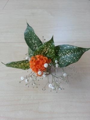 今月の花④