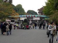 2008-11-15_140051.jpg