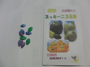 卵型ズッキーニ種