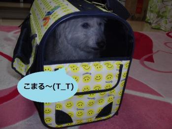 オレオINバッグ③