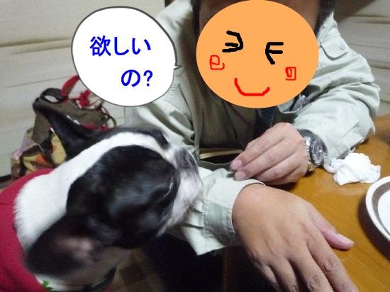 P1080261_20121214105429.jpg