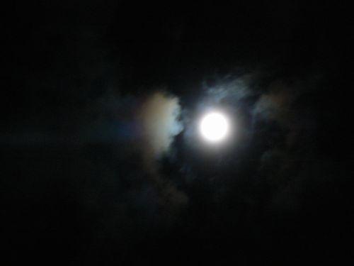 1_20121001192658.jpg