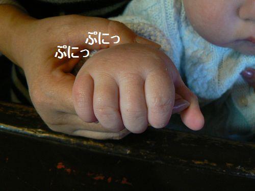 3_20120325201551.jpg