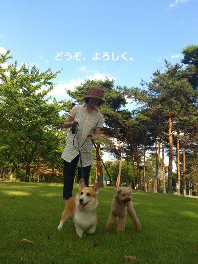 5_20120916105206.jpg
