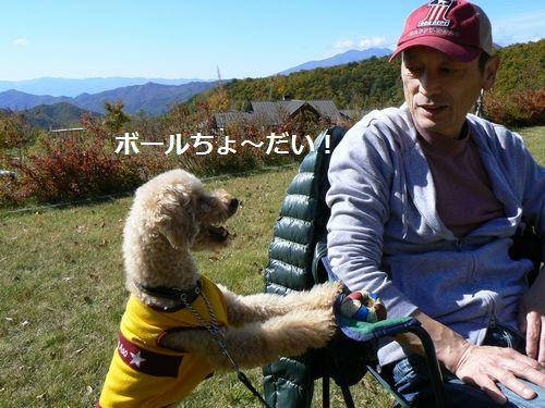 7_20121025214832.jpg
