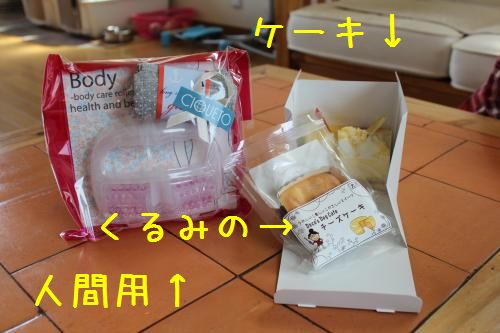 003_convert_20120513225636.jpg