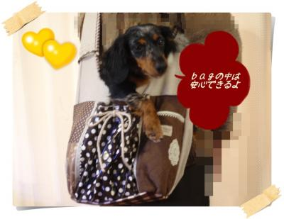 miura+bag04_convert_20110301165636.jpg
