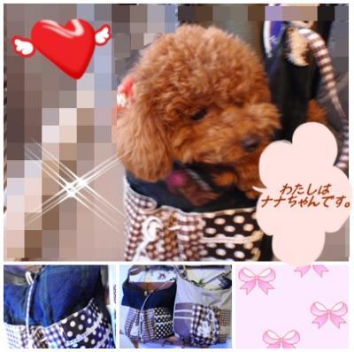 nana+chan+a2_convert_20110130233724.jpg