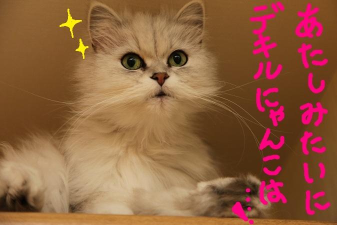 (10)_20120603222025.jpg