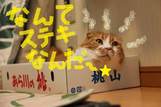 (12)_20120810195857.jpg
