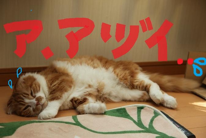 (13)_20120810201119.jpg