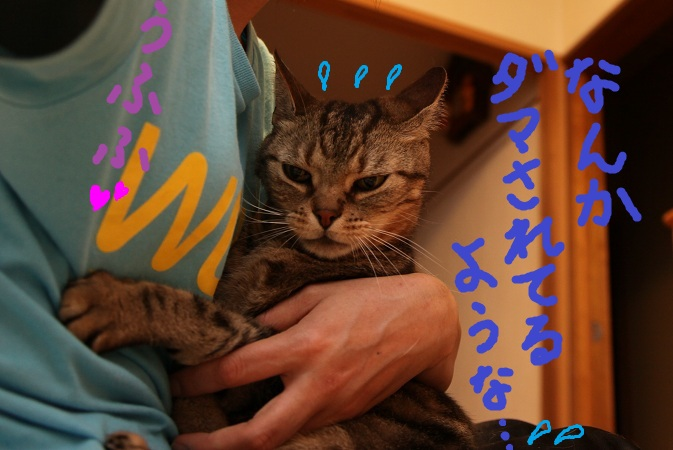 (14)a_20120623053329.jpg