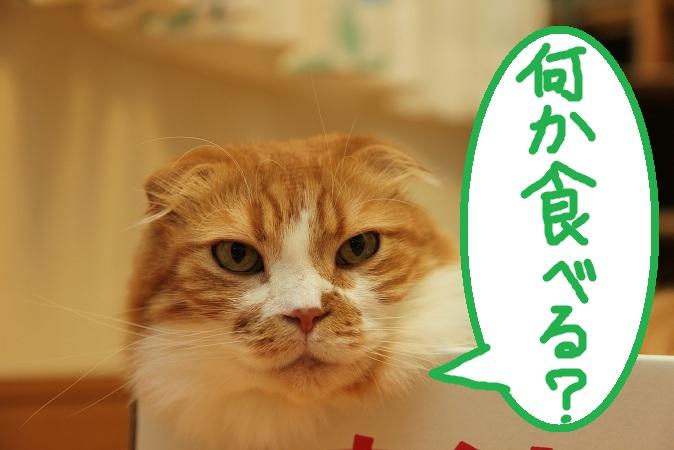 (2)_20120820055840.jpg