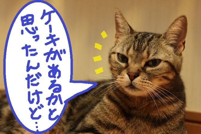 (3)_20120820055840.jpg