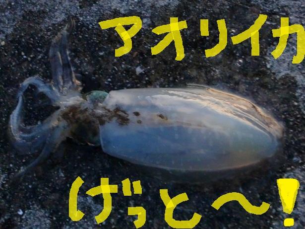 (4)_20120930230629.jpg