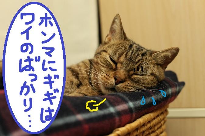 (4)a_20121118061112.jpg