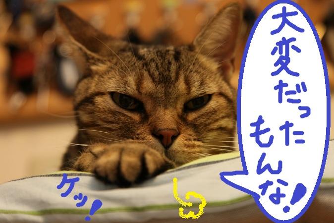(5)_20120820055839.jpg