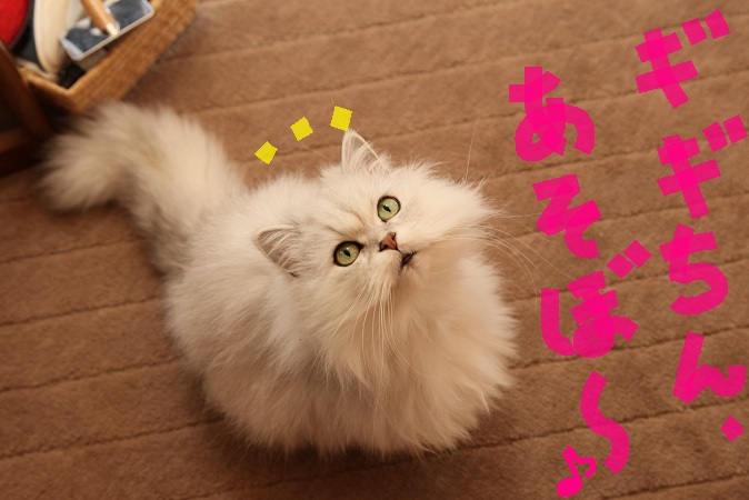 (5)a_20121118061112.jpg