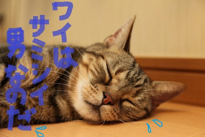 (8)_20120820055942.jpg