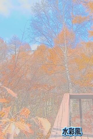 2012-1110-5.jpg