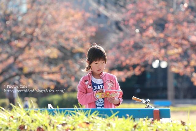 2012_11_18_IMG_6196r.jpg