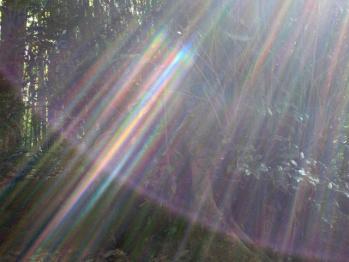 真名井の光2