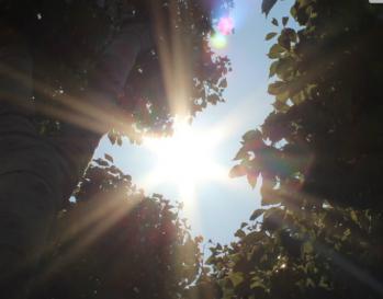 2012-05-26_000304.jpg