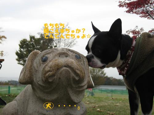 世界の名犬牧場?