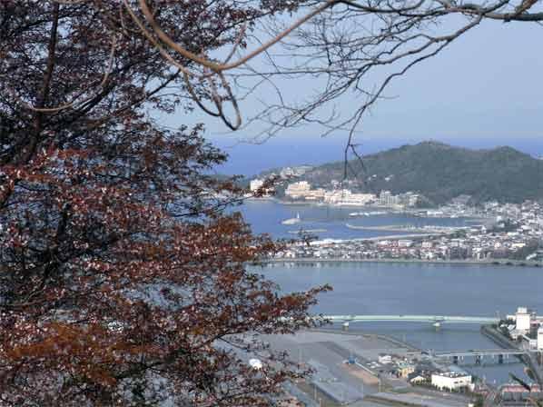 ヤマザクラと高津子山