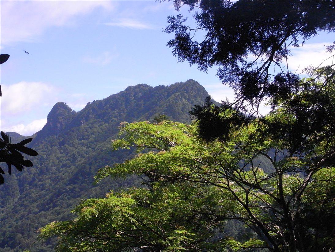 バリゴヤ山頂付近より稲村ヶ岳、大日山