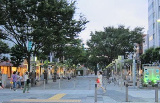 青葉公園テント
