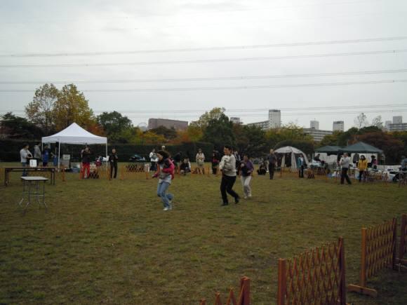 2010 11 14 003