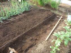 まず畝作り