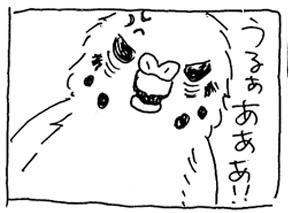 koma-atoto2.jpg