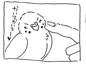 koma-atoto3.jpg