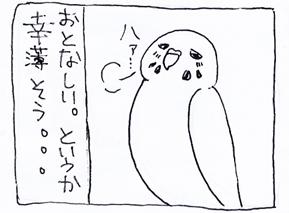 koma-haru2.jpg