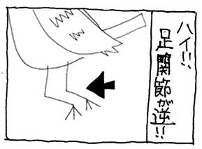 koma-ira3.jpg