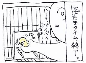 koma-kaku1.jpg